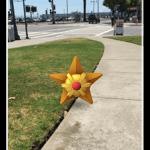 pokemon-stjerne