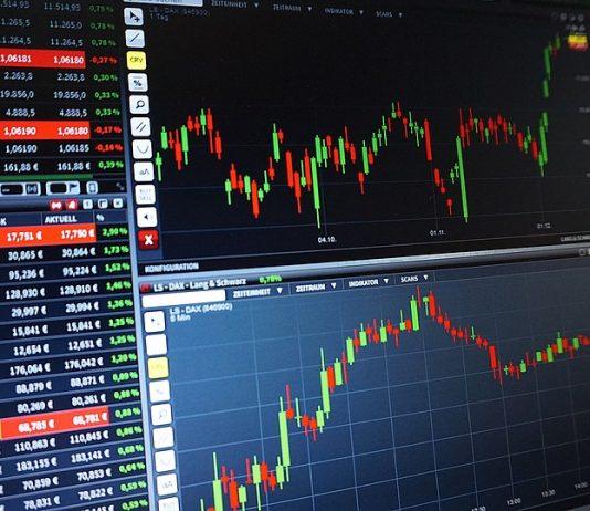 Sådan bliver du en haj til online investering